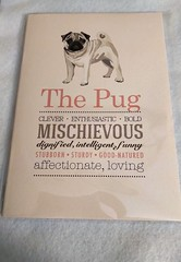 The Pug Notebook (Peony Cottage Boutique) Tags: pug dogs dog doglover pets pugs notepad notebook doggy socute paper writing notes