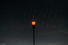 Nightlight (Uta_kv) Tags: lights toronto night spotmeter canon5d helios442