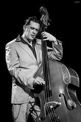 the bass player (dim.pagiantzas | photography) Tags: people man male musician music jazz art artist stage lights bass black blackandwhite grayscale monochrome group outdoor performance bestportraitsaoi