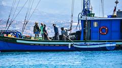 Pesce Spada (fede89bra) Tags: flickrunitedaward nikonflickraward passionphotography flickrpeople nikonphotographer nikondigital nikond750 d750 photography work wather sea 2019 nikkor80200f28 80200 nikkor messinaphotography messina pesca pescatori pescatore