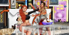 ♚ #764 ♚ (Caity Saint) Tags: nomatch redhead hair sparrow gacha crystal backdrop icecream gaeg skin ebento cats catwa maitreya pixels avatar dolls friends bento