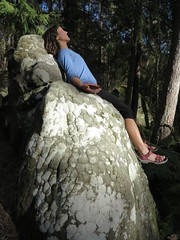 stone thrown in the sun (squeezemonkey) Tags: france fontainbleau castlestafftrip fontainebleau boulder sandstone texture rock portrait