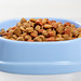 Cat food in blue bowl on white wooden background