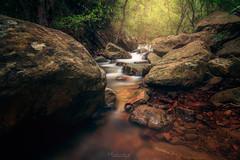 Río de la Miel (flamesay) Tags: algeciras cadiz riodelamiel paisaje waterscape falls otoño bosque andalucia flamesay rio river