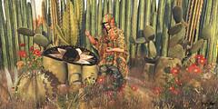 #115 - Te vengaré, Hermano (Yvain Vayandar) Tags: tliallithefairaroundtheworld fair secondlife sl mexico cactus desert poncho sombrero stop gizza reveobscura tmcreation chezmoi amitie smoochingserpents