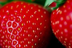 frutaria (Cor Oosterbeek) Tags: smileonsaturday frutaria aardbeien strawberries macro