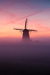 20190920-Canon EOS 6D Mark II-4134 (Bartek Rozanski) Tags: leidschendam zuidholland netherlands windmill grondzeiler mist fog morning dutch holland autumn polder groenehart greenheart randstad sunrise nederland