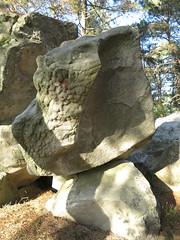bobbly textured rock (squeezemonkey) Tags: france castlestafftrip fontainebleau sandstone boulder texture rock