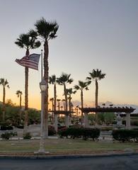September 19, 2019 (13) (gaymay) Tags: california desert gay love palmsprings riversidecounty coachellavalley sonorandesert palmtrees flag sunset