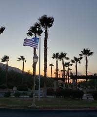 September 19, 2019 (14) (gaymay) Tags: california desert gay love palmsprings riversidecounty coachellavalley sonorandesert palmtrees flag sunset