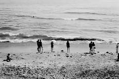 N0832019 (toshyie) Tags: fujiacros leicam6 summicronm50mm beach wave monochrome film フィルム 海 浜辺 モノクローム japan sand sun summer autumn