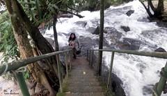 Sexta-poser, Eu posso! (sonia furtado) Tags: sextaposer poser bonito pe natureza nature interior nordeste brasil brazil soniafurtado