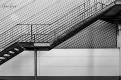 2019-09-20 (markus.bank) Tags: instadaily cologne eosr sw bw stairs picoftheday köln lind fotografietutgut canon porz photologen365 treppe