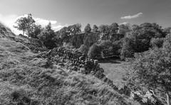 AlderyCliff (Tony Tooth) Tags: nikon d7100 sigma 1020mm landscape countryside rocks cliff alderycliff earlsterndale derbyshire peakdistrict limestone bw blackandwhite monochrome
