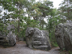 warped face (squeezemonkey) Tags: france castlestafftrip fontainebleau sandstone boulder trees texture landscape boulders