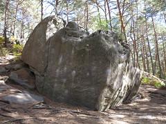 natural markings in rock (squeezemonkey) Tags: france fontainbleau castlestafftrip fontainebleau boulder sandstone texture woodland