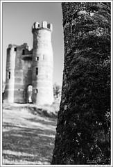 Chateau de Bressieux (Franck Planat) Tags: nikon d750 nikkor 35mm castle chateau architecture black white noir blanc nb bw
