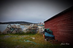 Newfoundland (janagoss32) Tags: nets shed fishing seashore whiteway newfoundland