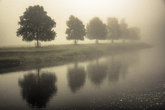 Sultry (vincocamm) Tags: misty foggy water river rivereden cumbria trees grey green reflection september autumn nikon d5500