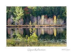 Upon Reflection (baldwinm16) Tags: northwoods october wi wisconsin autumn autumncolor autumnlandscape autumnscene autumnal fall fallcolor falllandscape fallscene landscape nature outdoors outside scenic season