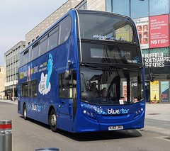 Bluestar 1564 is on Above Bar Street while on route 17 to City and Weston. - HJ63 JNU - 17th April 2019 (Aaron Rhys Knight) Tags: bluestar 1564 hj63jnu 2019 abovebarstreet southampton hampshire gosouthcoast goahead alexanderdennis enviro400