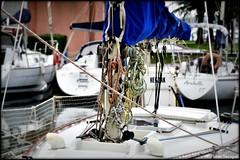 Cordages et bâche bleue (bleumarie) Tags: catalogne stationbalnéaire bleu littoral matin matinpluvieux printemps mai mai2019 2mai2019 printemps2019 littoralméditerranéen mariebousquet mididelafrance suddelafrance bleumarie côte france méditerranée mer midi nikond90 pyrénéesorientales occitanie roussillon canet canetplage canetenroussillon sud port bateau corde cordage voilier marina