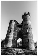 Chateau de Bressieux (Franck Planat) Tags: nikon d750 tokina 1628 castle chateau architecture black white noir blanc nb bw