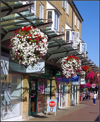 Bowen Square (Lotsapix) Tags: northamptonshire daventry town shops shopping shoppingcentre flowers building buildings