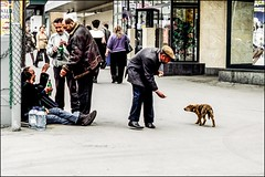 DRA110610_055A (dmitryzhkov) Tags: urban outdoor life human social public stranger photojournalism candid street dmitryryzhkov moscow russia streetphotography people city color colour animal pet epson scan film analog dog dogs animalsinthecity dogselect selection