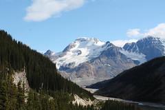 Mount Athabasca (rutteri) Tags: mountathabasca athabasca lake forest mountain glacier canada rockies rockymountains landscape dramatic peaks canadianrockies