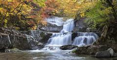 Bangtaesan waterfalls (Jaeyoun_ryu) Tags: landscape korea autumn waterfalls fairy falls foliage leaves panorama 방태산 이단폭포 폭포 가을 자연 nature light colors injae