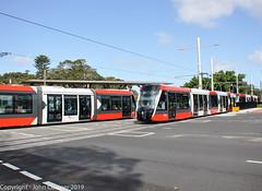 Sydney Light Rail - LRVs 023 & 024 cross with 037 & 038  at Lang Road (john cowper) Tags: sydneylightrail cselr moorepark alstom citadisx05 construction altrac transportfornsw transdev drivertraining testing lrv011 lrv012 lrv027 lrv028 lrv023 lrv024 lrv037 lrv038 sydney newsouthwales