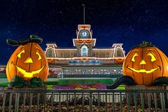 More Halloween Pumpkins | Magic Kingdom (Pandry 2015) Tags: nightphotography canonusa canon6d tourism resorts themepark vacation pumpkins disneyland autumn halloweendecorations halloween magickingdom waltdisneyworld disney wdw