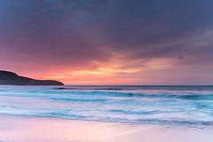 Soft Pink Sunrise Seascape (Merrillie) Tags: daybreak sunrise nsw nature australia centralcoast landscape sea waves killcarebeach newsouthwales rocks earlymorning morning cloudy water ocean waterscape clouds pink coastal highcloud outdoors seascape dawn coast killcare sky
