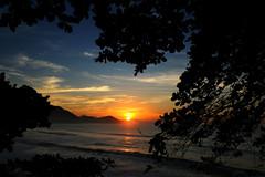 Sunrise among the trees shadows (Klauss Egon) Tags:
