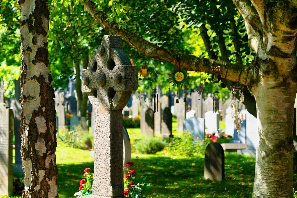 TODAY I VISITED GLASNEVIN CEMETERY [TODAY I USED A SONY 90MM MACRO LENS]-155963