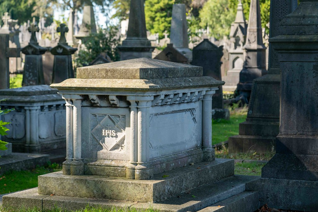 TODAY I VISITED GLASNEVIN CEMETERY [TODAY I USED A SONY 90MM MACRO LENS]-155971