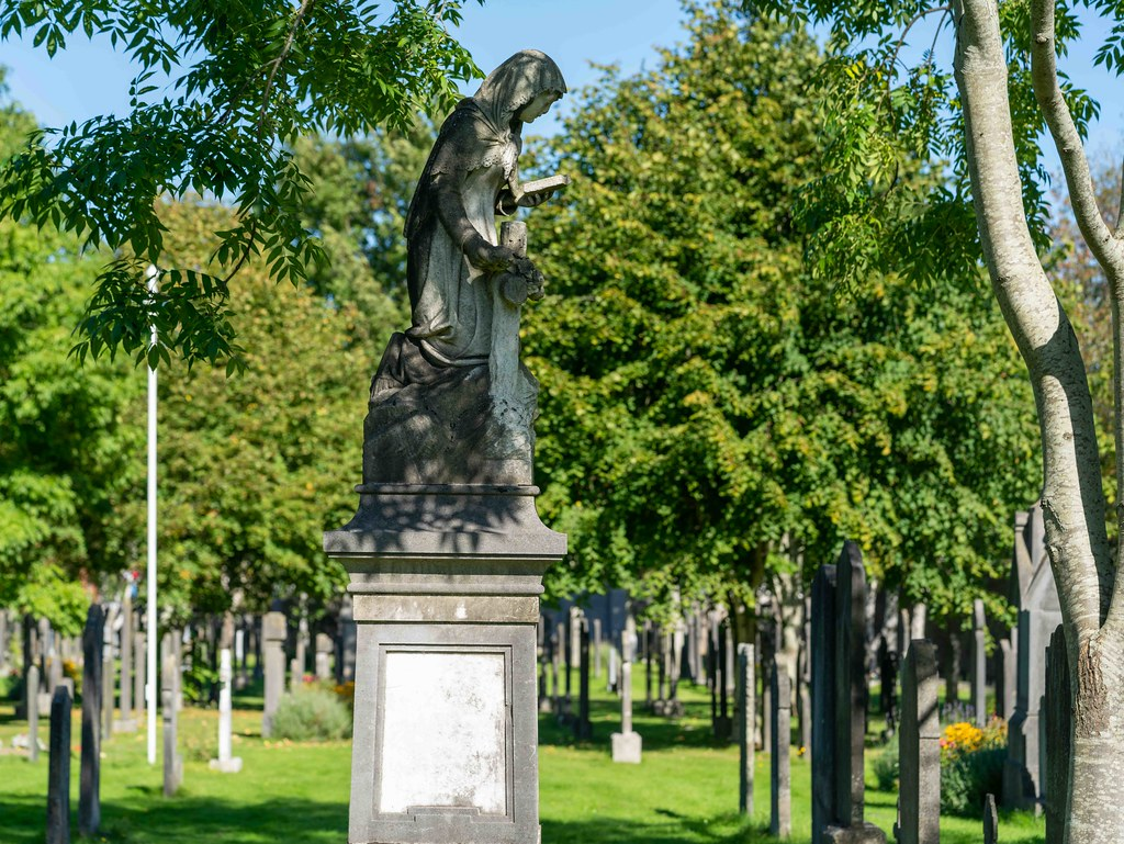 TODAY I VISITED GLASNEVIN CEMETERY [TODAY I USED A SONY 90MM MACRO LENS]-156008