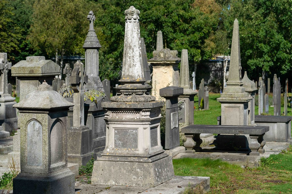 TODAY I VISITED GLASNEVIN CEMETERY [TODAY I USED A SONY 90MM MACRO LENS]-155973