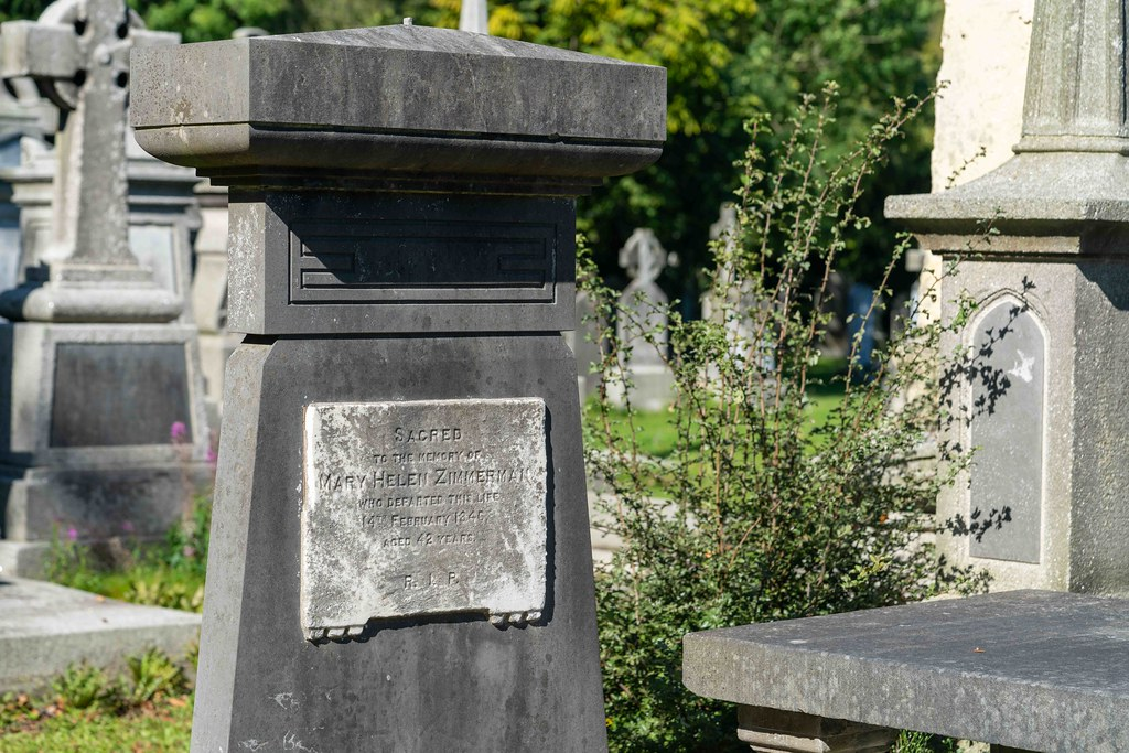 TODAY I VISITED GLASNEVIN CEMETERY [TODAY I USED A SONY 90MM MACRO LENS]-155976