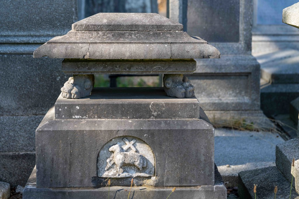 TODAY I VISITED GLASNEVIN CEMETERY [TODAY I USED A SONY 90MM MACRO LENS]-155985