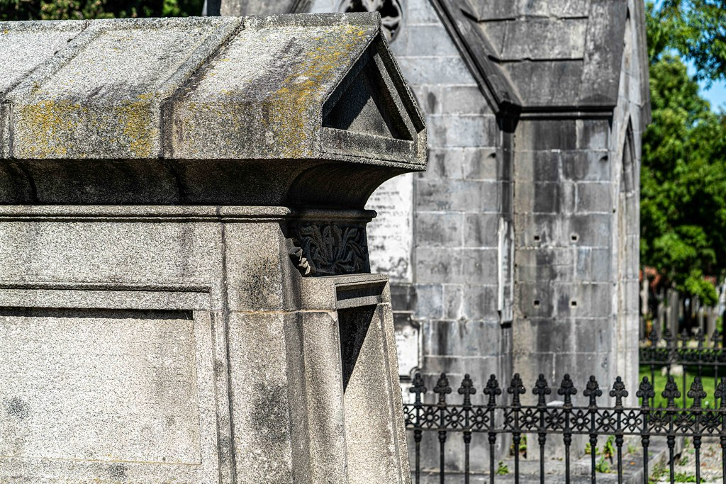 TODAY I VISITED GLASNEVIN CEMETERY [TODAY I USED A SONY 90MM MACRO LENS]-156006
