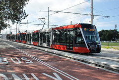 Sydney Light Rail - LRVs 037 & 038  approach Moore Park stop (john cowper) Tags: sydneylightrail cselr moorepark alstom citadisx05 construction altrac transportfornsw transdev drivertraining testing lrv011 lrv012 lrv027 lrv028 lrv023 lrv024 lrv037 lrv038 sydney newsouthwales