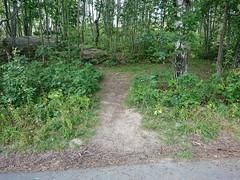 DSC_1615 (mtbboy1993) Tags: askim indreøstfold østfold norge norway trees skog forest sykkelvei sykkelsti asphalt singletrack barerock