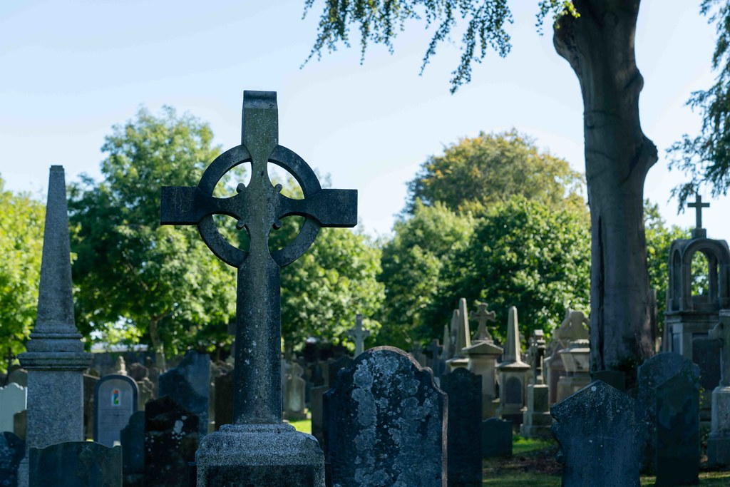 TODAY I VISITED GLASNEVIN CEMETERY [TODAY I USED A SONY 90MM MACRO LENS]-155968