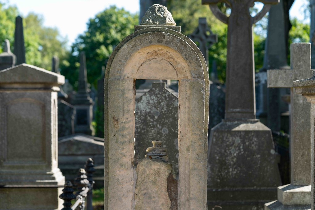 TODAY I VISITED GLASNEVIN CEMETERY [TODAY I USED A SONY 90MM MACRO LENS]-155970