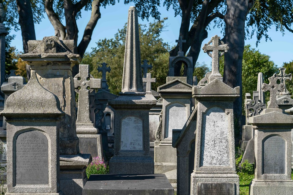 TODAY I VISITED GLASNEVIN CEMETERY [TODAY I USED A SONY 90MM MACRO LENS]-155977