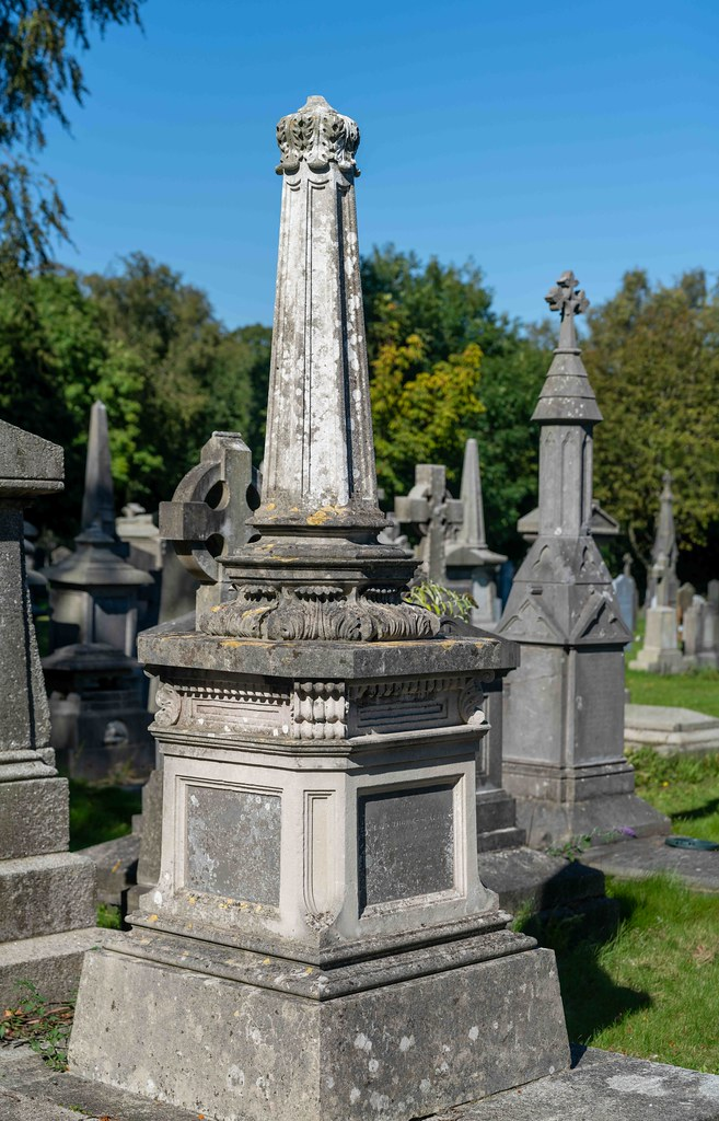 TODAY I VISITED GLASNEVIN CEMETERY [TODAY I USED A SONY 90MM MACRO LENS]-155974