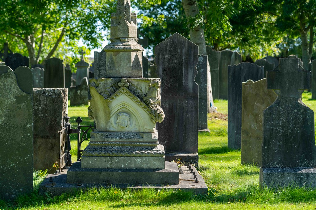 TODAY I VISITED GLASNEVIN CEMETERY [TODAY I USED A SONY 90MM MACRO LENS]-155982
