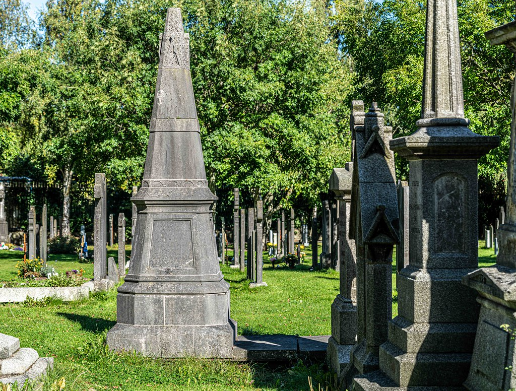 TODAY I VISITED GLASNEVIN CEMETERY [TODAY I USED A SONY 90MM MACRO LENS]-155987